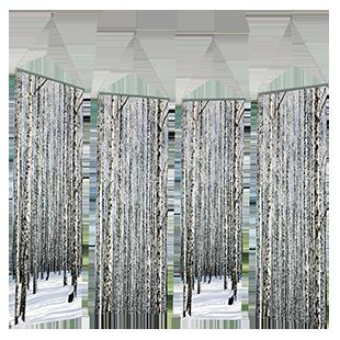 Kakemono Forêt Bouleau